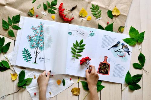 06-24 Как оформить гербарий